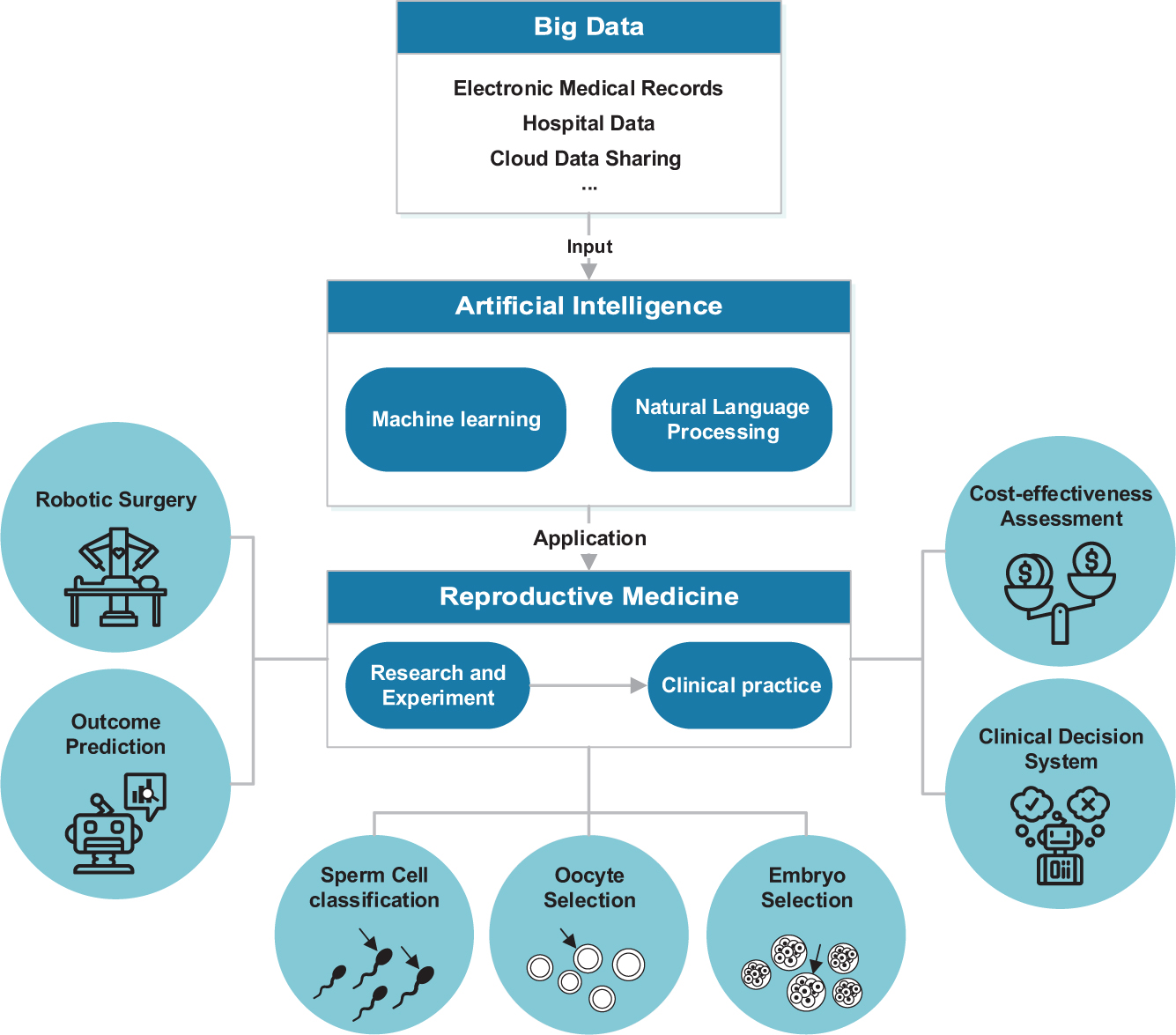Artificial intelligence in reproductive medicine in
