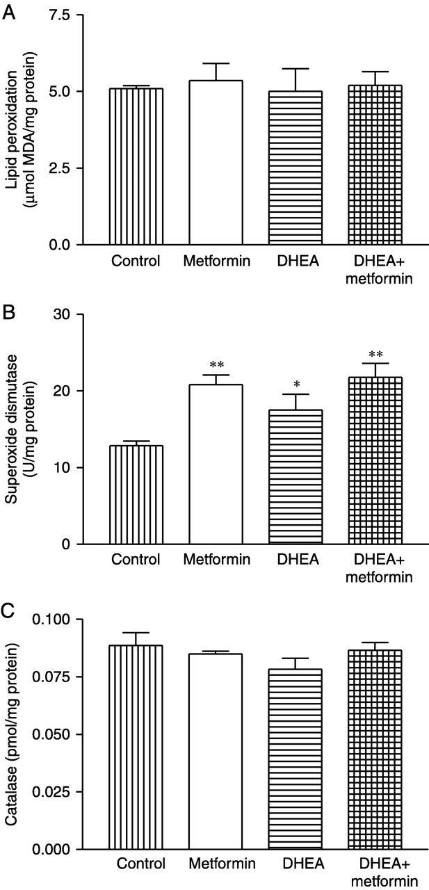 Effect Of Dhea And Metformin On Corpus Luteum In Mice Reproduction 3 5l Colorado Engine Cooling Diagram Figure