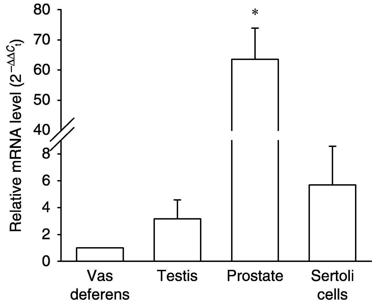 Locally Produced Relaxin May Affect Testis And Vas Deferens Function
