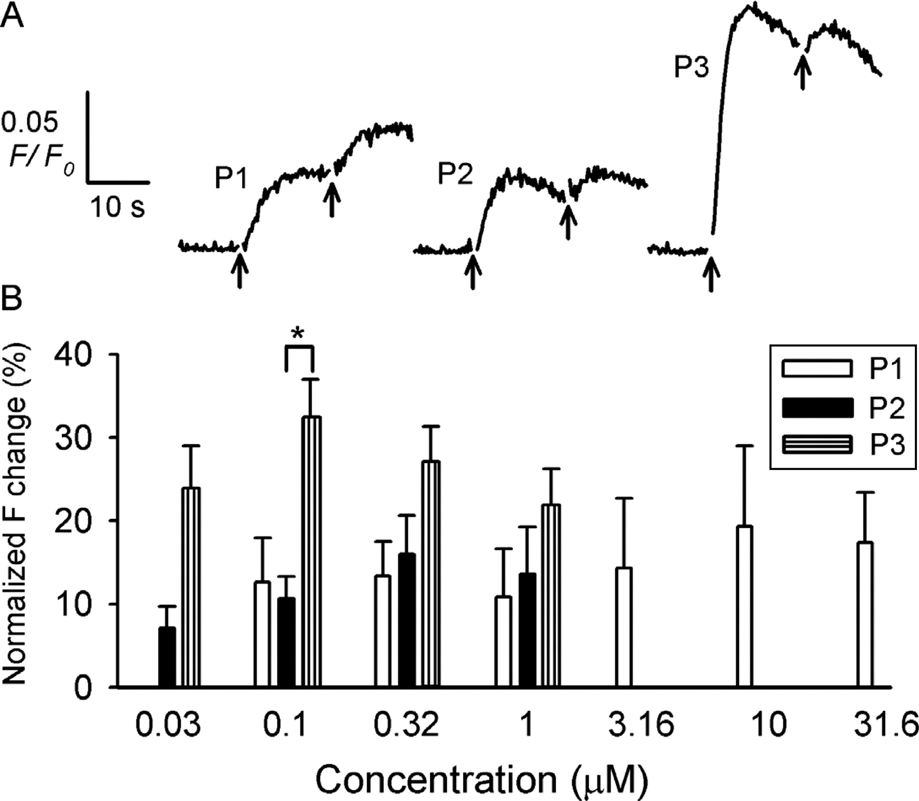 A caged progesterone analog alters intracellular Ca2+ and