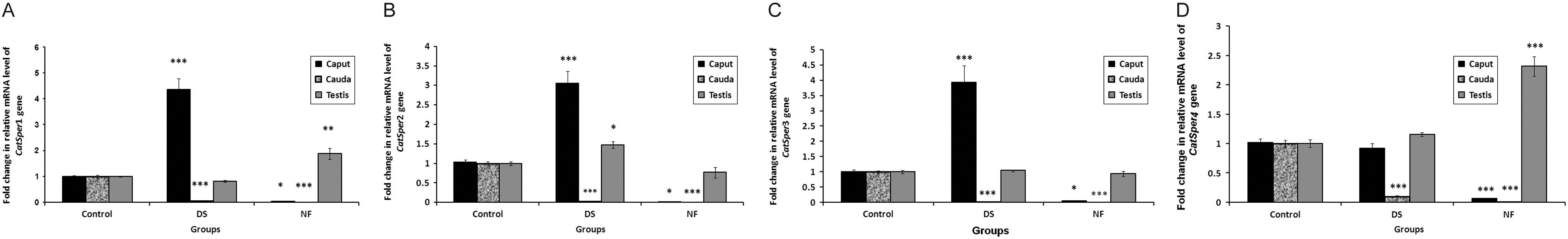 Influence Of Antifertility Agents Dutasteride And Nifedipine On Catsper Gene Level In Epididymis During Sperm Maturation In Balb C Mice In Reproduction Volume 155 Issue 4 2018