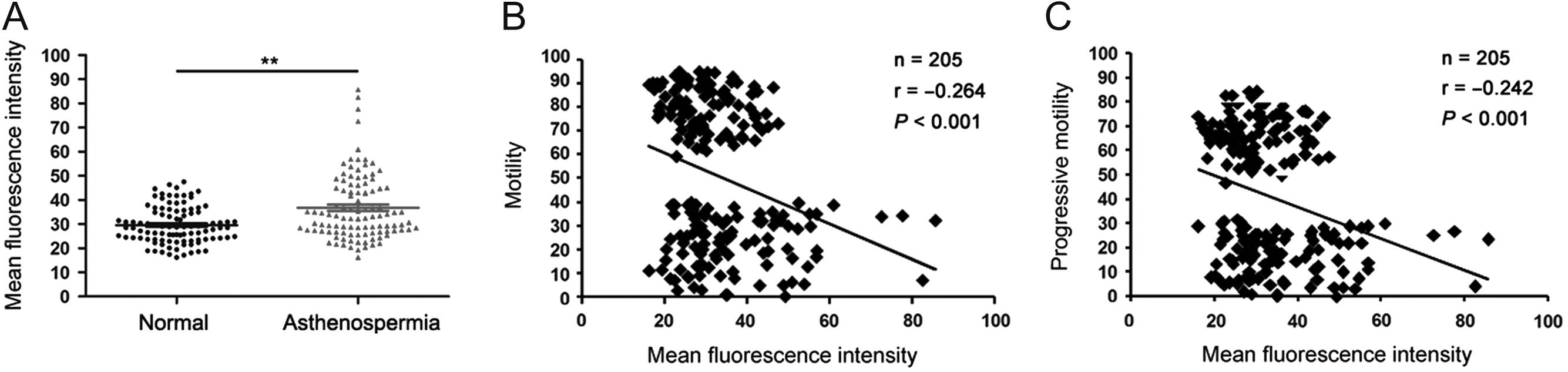 RNASET2 impairs the sperm motility via PKA/PI3K/calcium