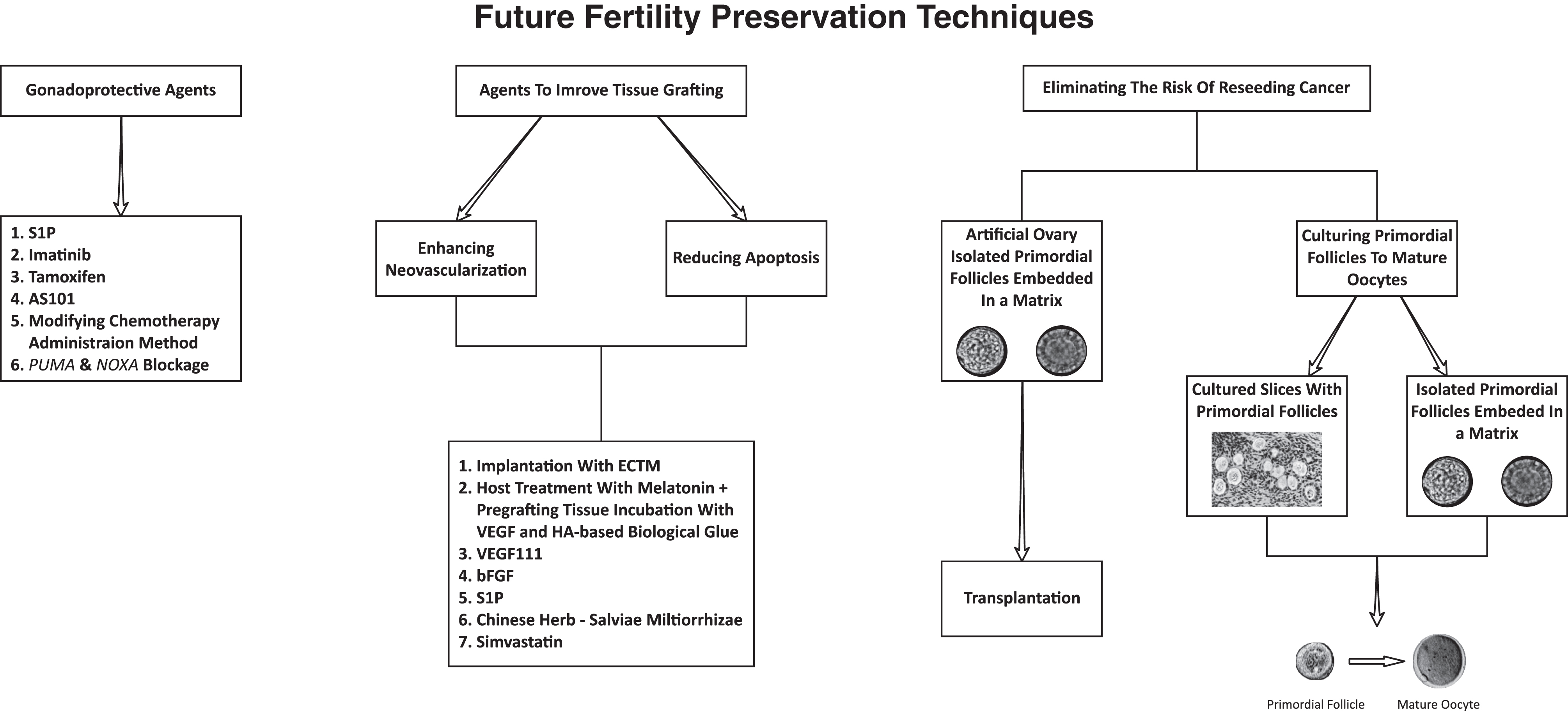 Female Fertility Preservation Past Present And Future In Reproduction Volume 156 Issue 1 2018